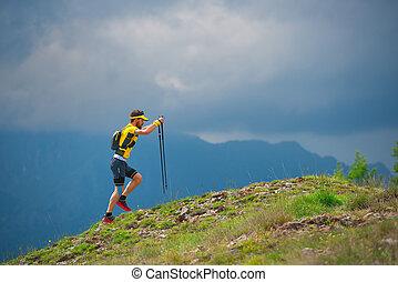 solamente, montañas, ambulante, hombre