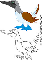 Solan - Footed booby, color and black-and-white outline...