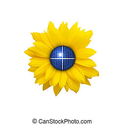 Blue solar cells collecting sunlight on sunflower