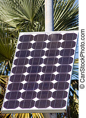 Solar Cell Array - Array of electricity generating solar...