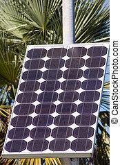 Solar Cell Array - Array of electricity generating solar...