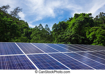 Solar cell panels with trees and blue sky nature outdoor