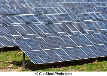 Solar Collectors of an industrial plant for alternative energy
