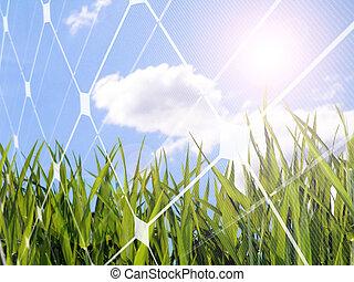 Solar energy concept - photovoltaic solar cell with a fresh...