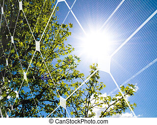 Solar energy concept - Tree at spring against the sun and...