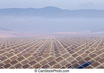 huge solar field in the morning
