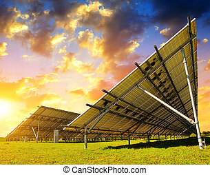 Solar energy panels in the meadow at sunset.