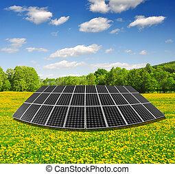 Solar energy panels on dandelion field against sunny sky -...