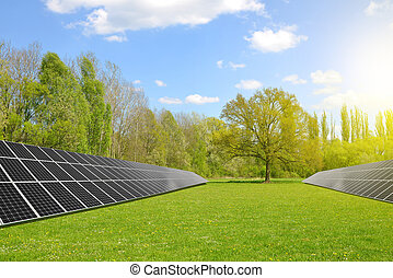 Solar energy panels on meadow. Clean energy.