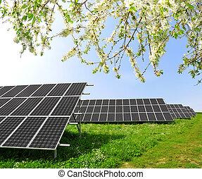 Solar energy panels in spring landscape