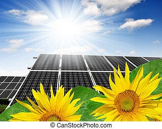 Solar energy panels with sunflower  against sunny sky