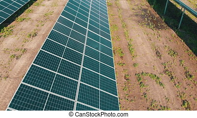 Solar Farm. Aerial view on Solar Power Station in Green Field on Sunny day. Drone fly over Solar Panels which Stands in Row for Power Production. Renewable green energy. Alternative energy sources.