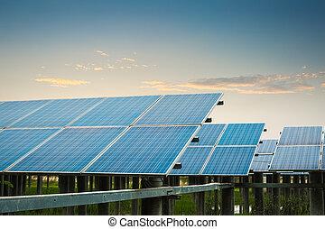 solar farm at dusk - solar power plant at dusk, clean energy...