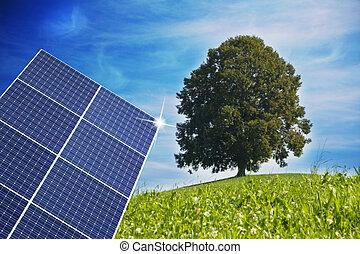 solar panel and tree