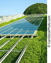 Solar Panels with Green environment.
