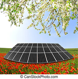 solar panel with red poppy field