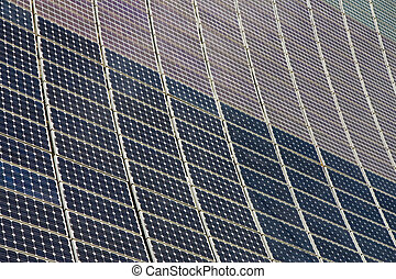 An array of solar panels. Alternative energy
