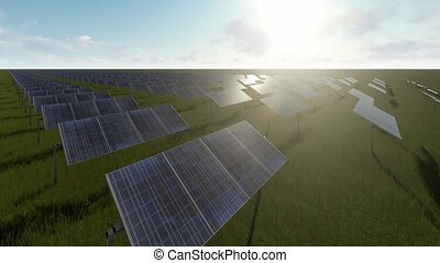 Solar panels and green grass