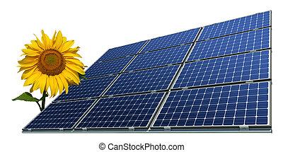 Solar panels and sunflower - Mono-crystalline solar panels...