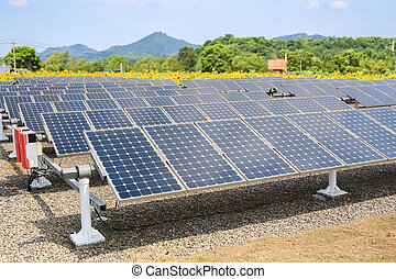solar panels and sunflower farmland background
