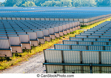 solar panels field on a sunny day