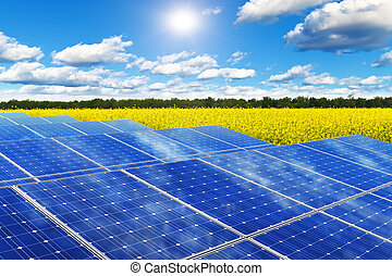 Solar panels in rape field - Creative solar power generation...