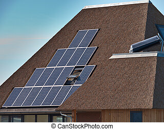 Solar panels on a thatched roof