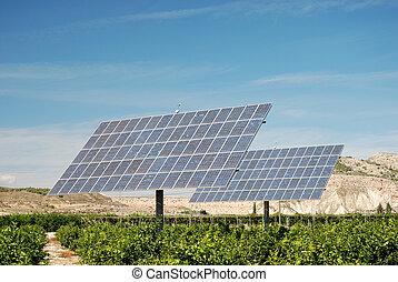 Solar panels on an orange plantation in Spain - Solar panels...
