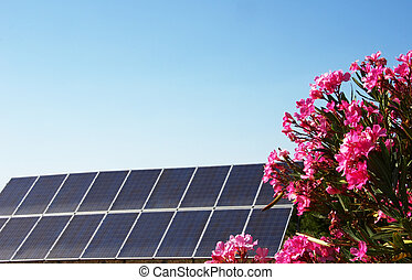 Solar panels on blue sky with bouquet of pink flowers