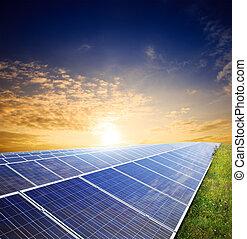 Solar panels on green field under sunset sky