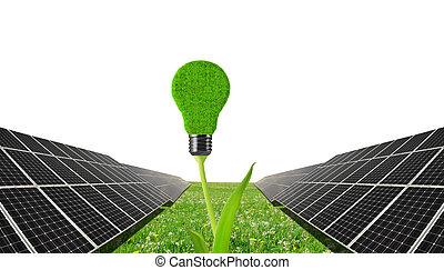 Solar panels with lightbulb on plant .Clean energy.