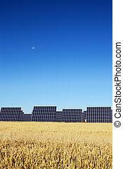 Solar panels, under blue sky