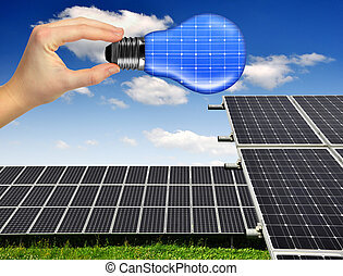 solar panels with hand holding bulb