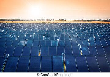 Solar park in the sunrise