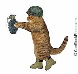 soldado, granada, gato