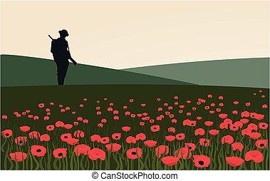soldado, solitário