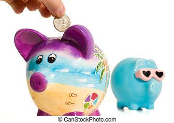 soldi, mettere, banca piggy, mano