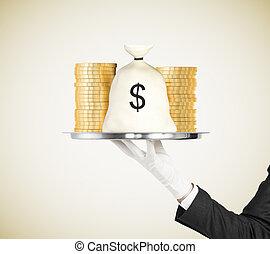 soldi, monete, concetto, vassoio, borsa