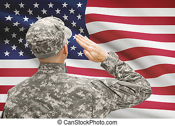 Soldier in hat facing national flag series - United States