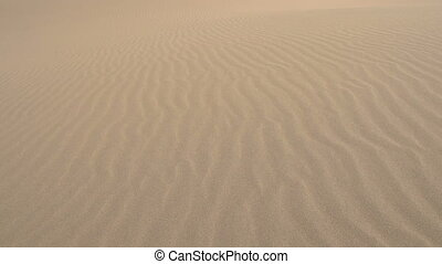 Soldier Moves on Dunes