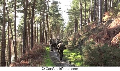 Soldiers on Exercise - Soldiers walking into the forest on a...