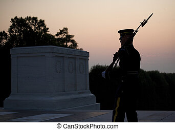 soldiers sunrise - sentry guarding the tomb of the unknowns...