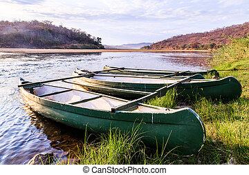 sole, canottaggio, luminoso, dire bugie, banche, barca fiume