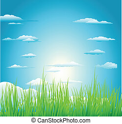 sole, sopra, erba verde, campo