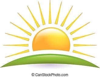 sole, vettore, collina verde, logotipo, icona