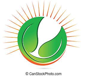 sole, vettore, verde, mette foglie, logotipo
