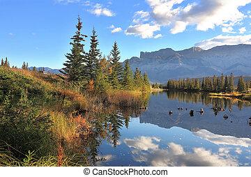 soleado, jaspe, parque, nacional, mañana, canadá