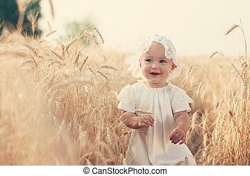 soleado, niño, trigo, reír, campo