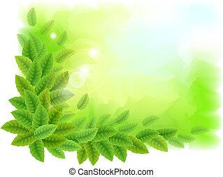 soleado, plano de fondo, con, hojas verdes