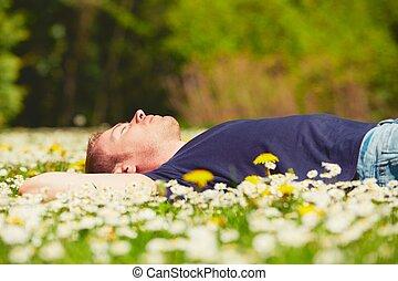 soleado, relajar, día